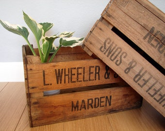 Vintage Wooden Apple Crates, Storage, British, Shelves
