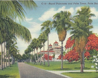Vintage 1940s Palm Beach Florida Postcard Biltmore Hotel