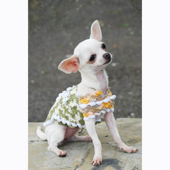 Items similar to chihuahua clothes unique crochet dog - Dog clothes for chihuahuas ...