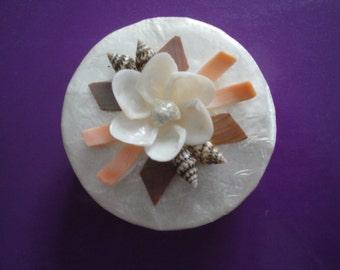 Trinket Box Seashells Sea Shell Capiz Jewelry Box
