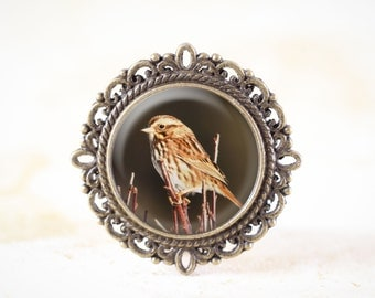 Song Sparrow Brooch - Songbird Jewelry Pin , Sparrow Bird Broach