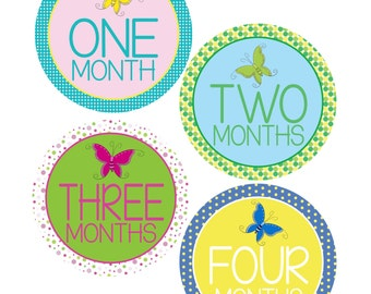 Butterfly Monthly Bodysuit Stickers - Butterfly Girl - New Mom gift - For a baby girl months 1-12 - Perfect for Photo Albums