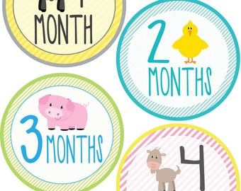 Farm Animals Bodysuit Sticker Package - Save Money - 1-24 Months, My First & Just Born Stickers - Great Gift - Fun Photo Props