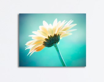 "Aqua Canvas Print - teal flower photography turquoise gallery wrap canvas floral nature daisy modern artwork colorful wall art, ""Vanity"""