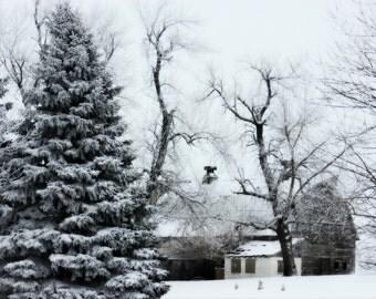 Hidden Barn Frosty Trees Snow Rustic Barn Winter Scene