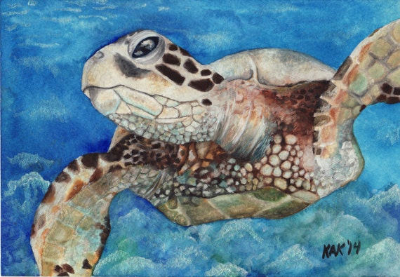 Limited Edition Print of Original Turtle Watercolor Painting