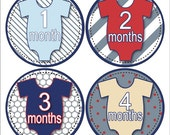 Photo Prop Stickers, Monthly Baby Stickers, Milestone Stickers, Month to Month Stickers, Boy or Girl Baby Stickers