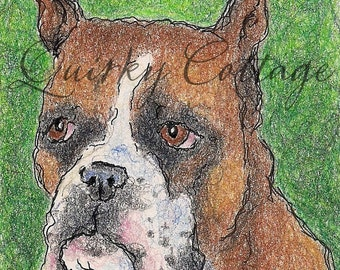 Boxer Portrait - Original Boxer Drawing - Fawn Boxer - Boxer Art