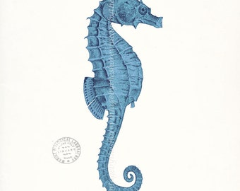 Coastal Decor Art Print - Antique Sea Horse Natural History Nautical Wall Decor - coastal blue