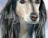 "Saluki, Sighthound, Black, Fawn, AKC Hound, Pet Portrait Dog Art Watercolor Painting Art Print, Wall Art, Home Decor ""Gazelle Hound"" k9stein"