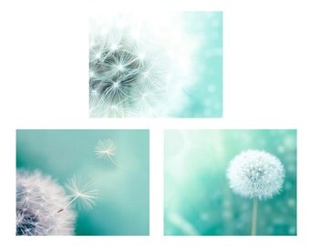 dandelion print photography set of 3 prints dandelion decor dandelion wall art dandelion photography aqua mint print set botanical art print