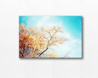 botanical canvas art autumn photography canvas print 12x12 24x36 fine art photography fall leaves tree canvas wrap golden teal aqua canvas