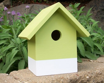 Modern Birdhouse - Nest Box - Green and White - Blue and White - Bird House