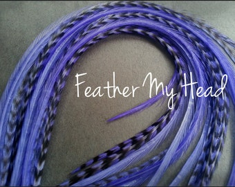 10 Whiting Grizzly Feather Extension Saddle Hackle Extra Long Hair Feathers 9-12 inches Iris Purple