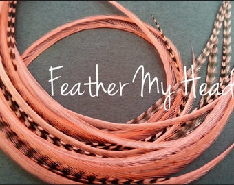 "10 Premium Feather Extensions, Extra Long Long, Coral Grizzly And Solid Feathers 9""-12"" Coral"