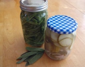 Make Your Own Countertop Pickles - No Cook, Super Fast, Amazing Recipe - Instant Download - Discover Fermented Foods