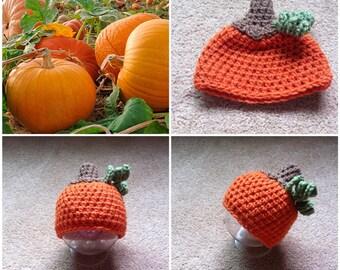 Crochet Pumpkin Beanie/Hat