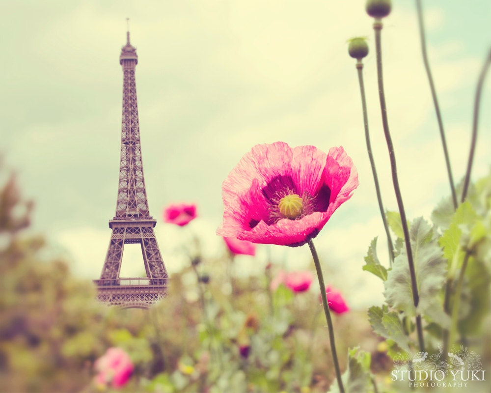 Halloween decoration office - Paris Photography Eiffel Tower Poppies Nature French