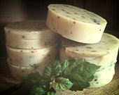 Patchouli-Lime Soap & Shampoo, ALL-NATURAL, fragrant, palm-free, vegan, shampoo bar, solid shampoo