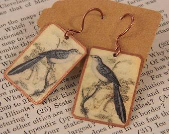 Bird earrings Vintage bird illustrations Spring earrings mixed media jewelry