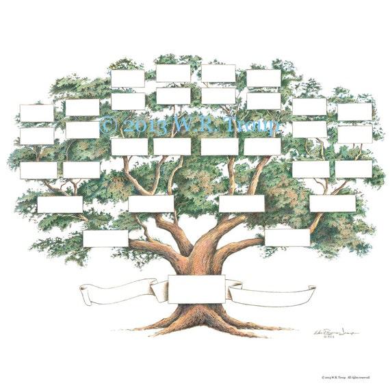 Blank Family Tree Template 5 Generations Militaryalicious