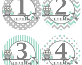 Baby Monthly Milestone Growth Stickers in Mint Grey Owls Nursery Theme MS300 Baby Boy Shower Gift Baby Photo Prop