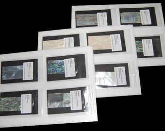 Sample package containing 12 pieces of various types of shell veneers for evaluation