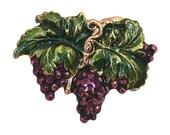 Large Grapes 2 inch ( 50 mm ) Susan Clarke Button