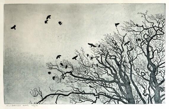 Etching - 'Hillsborough Rooks' - Black and White Etching - Original Bird Print - William White - Birds in Sky Etching - Free Shipping