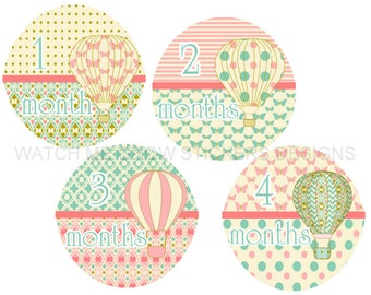 Baby Girl Stickers Monthly Baby Stickers Hot Air Balloons Girl Milestone Stickers Month Stickers Baby Monthly Stickers Baby Shower Gift