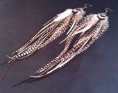 DSCK Designs Lovely Natural Brown Saddle Pheasant Feather Earrings