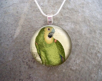 Parrot Jewelry - Glass Pendant Necklace - Victorian Bird 27