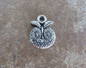 8 Small Cute OWL Face Charms Little Owls Antique Silver Tone Charm Jewelry 17x14 mm