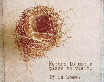 Bird Nest Photo with Quote Vintage Style Nature Photograph Print