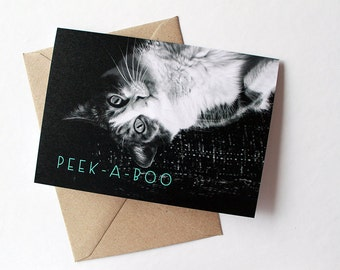 Cat Greeting Card - Any Occasion - Blank Inside - Photo Greeting Card