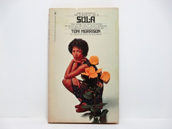 a literary analysis of the tragedy in sula by toni morrison Sula by toni morrison home / literature / sula / analysis: booker's seven basic plots analysis voyage and return, comedy, tragedy.