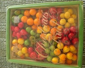 Decorative Assorted Fruits for the Christmas Holiday Season.....12 Bunches