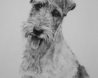 Wire Fox Terrier dog fine art Limited Edition print from an original charcoal drawing
