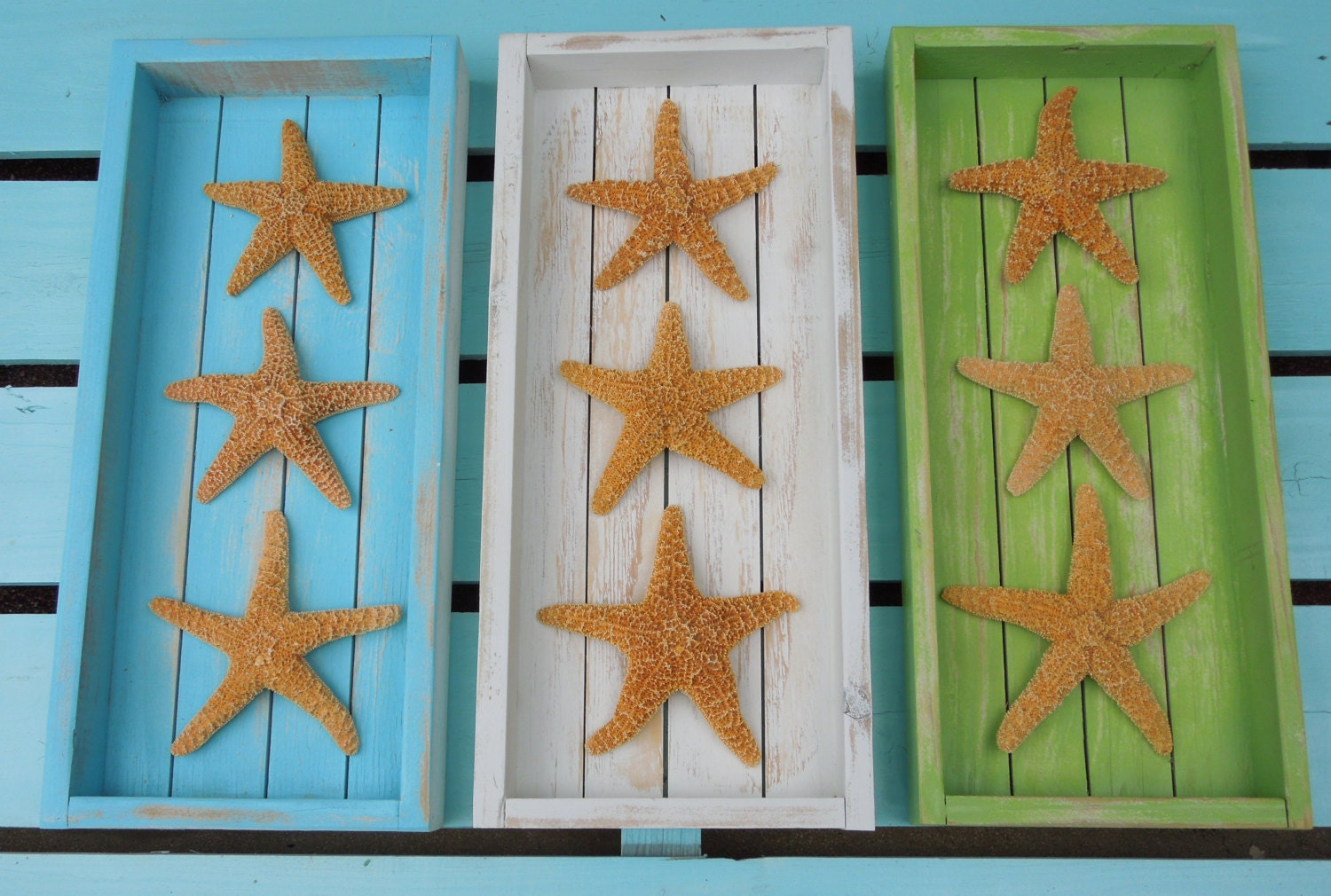 beach decor coastal picture frame with sugar starfish home
