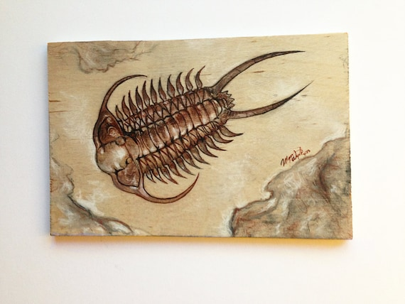 Trilobite fossil - original mixed media illustration on wood    Trilobite Illustration