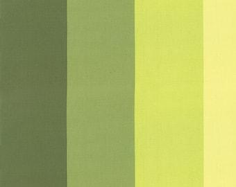 Moda Color Me Happy Color Block Ombre Lime - 1 yard