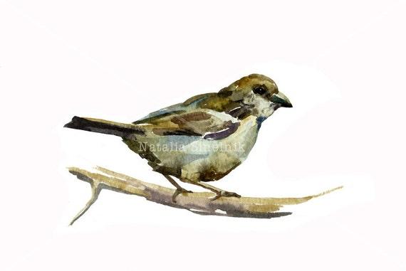 Small sparrow on the tree digital download from original watercolor animal pattern nursery bird clip art