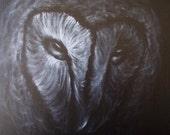"Original Black and White Oil Painting ""Barn Owl"""