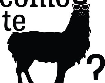 Spanish Funny Como Te Llama Decal Sticker