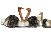 Animals Ceramic Ostrich Bird Family Figurine Hand painted