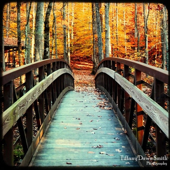 Autumn Bridge Print, Nature Photography, Fall Picture, October Photo, Orange Home Decor, Park, Square Photograph, Bridge Photo, Leaves ttv