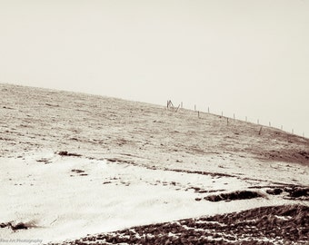 Homeland: Minimalist country landscape, sepia tone photography, rustic winter landscape, western elegance, barb wire fence, simplicity, snow