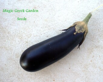 Eggplant seeds , 15 ,  Melinzana seeds, non gmo seeds, gardening , vegetable seeds, greek mouzaka, summer seeds