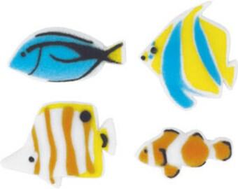 30  Edible Reef Fish Assorted  Sugars        Simply Darling