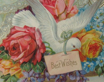 Early 1900's Postcard (Lithograph) of Dove - Embossed - Floral